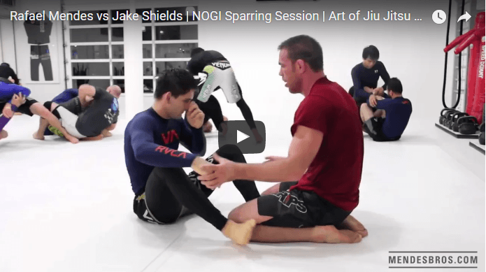 Rafael Mendes vs Jake Shields | NOGI Sparring Session