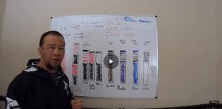 Jiu-Jitsu BJJ Belt System Explained