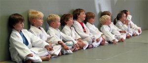 kids 300x128 - How BJJ Training Develops Positive Virtues In Kids