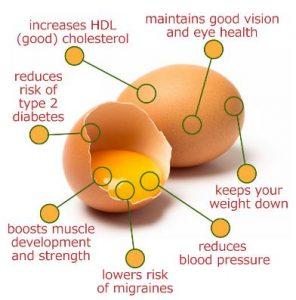 Eggs, nutrition, BJJ