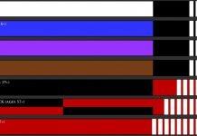 Beazilian Jiu Jitsu Belts xplained