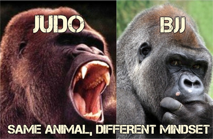 JUDO BJJ - BJJ vs. Judo - What Are The Main Differences?