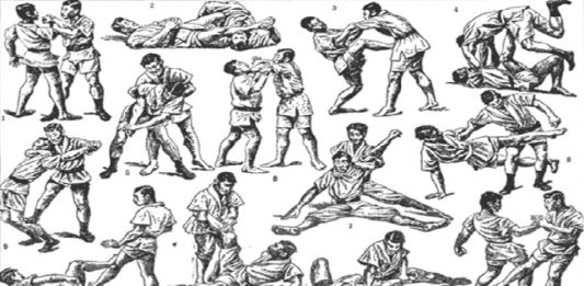 The Difference Between Japanese Jiu-Jitsu And BJJ