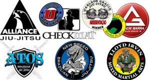 BJJ Teams1 300x160 - BJJ Teams - Their Role, Mentality And Benefits For Competitors
