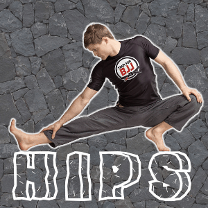 Yoga For BJJ: Sebastian Brosche Yoga For Rocks DVD Hips
