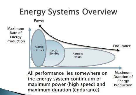"energysystemsoverview - Best Cardio For BJJ - The ""Never Gas Out"" Program"