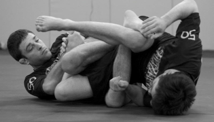 Ryan Hall Best BJJ DVD Instructionals