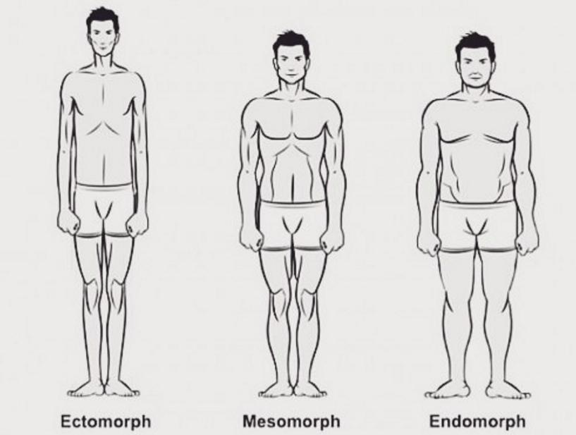 BJJ style Body Type