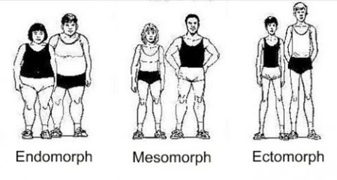 Do You Have The Best BJJ Style For Your Body Type?