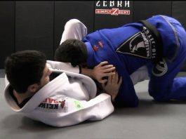 Butterfly Guard Passes