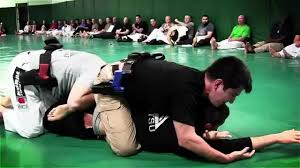 images 2 - Jiu-Jitsu For Law Enforcement To Keep Our Officers Safe