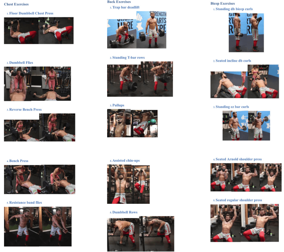 Gordon Ryan DVD E Book - Gordon Ryan DVD/DIGITAL/EBOOK - Getting SWOLE As A Grappler