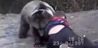 Khabib Nurmagomedow Wrestling With a Bear