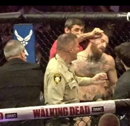 Conor Mcgregor Punched by a guy from Khabib's team