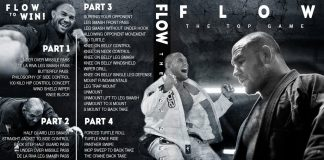 Cyborg Abreu DVD Flow-The Top Game