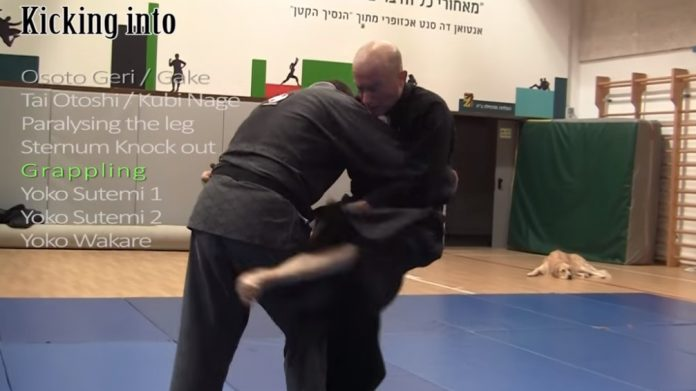 Ninjutsu Master Develops System Using Kicks Against Grapplers
