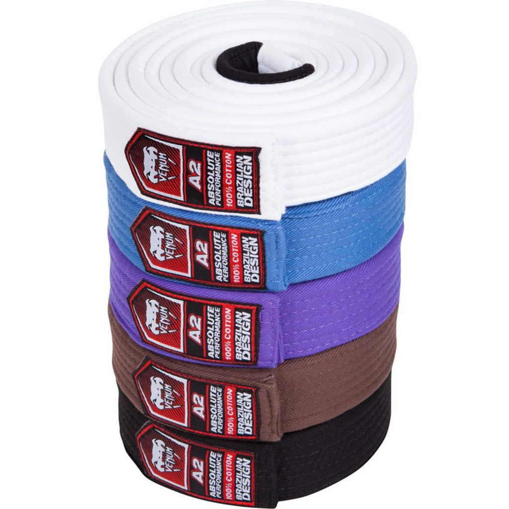 bjj belts all hd 02 copie 3 1 1024x1024 - Best BJJ Christmas Gifts & Presents For 2021