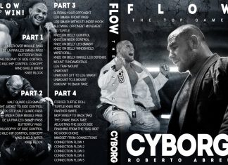 "BRAND NEW ""Flow: Top Game"" Roberto Cyborg Abreu DVD"
