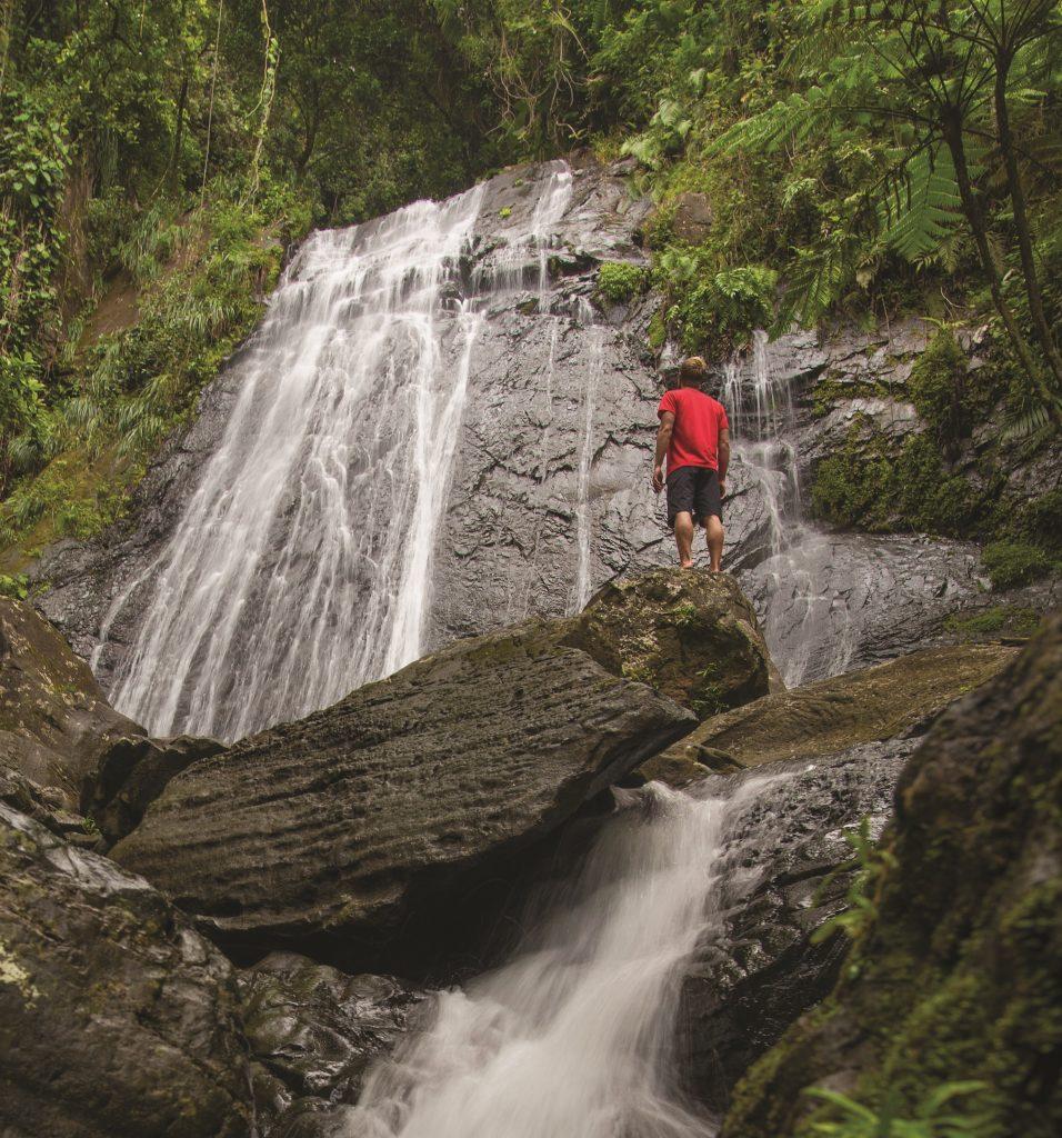 waterfall 956x1024 - Brazilian Jiu-Jitsu Cruise Vacation: Submissions On The High Seas