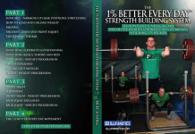 Ricky Lundell DVD 1 % better Every Day