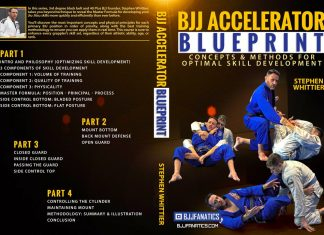 Review Of the BJJ Accelerator Blueprint Stephen Whittier DVD Instructional