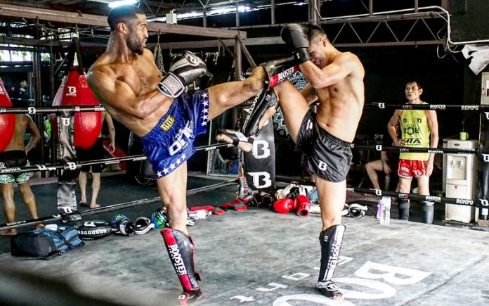 The ultiamte gude for the beest MMA shin guards Of 2019