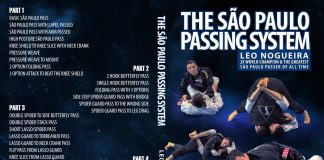 "A Review Of The Leo Nogueira DVD ""Sap Paolo Passing System"""