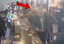 Conor McGregor Sucker Punched a guy in Irish Pub