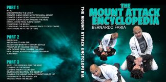 Mount Attack Encyclopedia Bernardo faria
