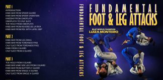 Luiza monteiro DVD IBJJF Legal leglocks Full REview