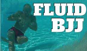 download 5 - Fluid BJJ DVD by Karel Pravec - A Review