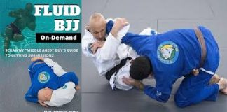 Karel Pravec Fluid BJJ DVD Cover