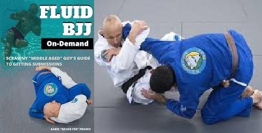 Karel Pravec Fluid BJJ DVD Cover