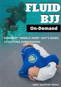 Screenshot 768 212x300 - Fluid BJJ DVD by Karel Pravec - A Review