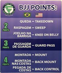 BJJ Points For Each Position