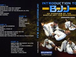 Introduction To BJJ DVD by Bernardo Faria