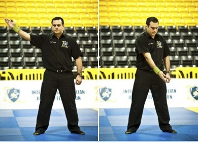 go down - Understanding BJJ Referee Gestures And Commands