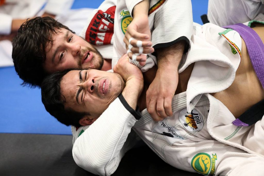 Train a Jiu-Jitsu Move on both sides