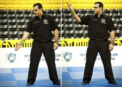 raise - Understanding BJJ Referee Gestures And Commands