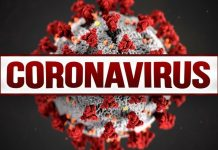 Coronavirus BJJ Guidelines For Protection