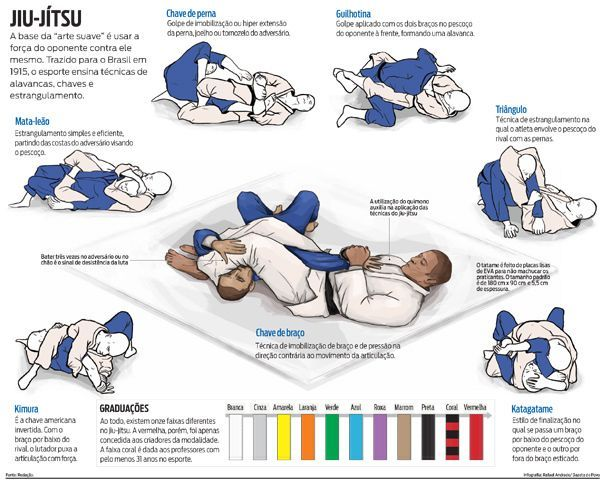 c8a60e3d0b67f631ab63581a0abdfb34 - How Many Brazilian Jiu-Jitsu Techniques Do You Really Need?
