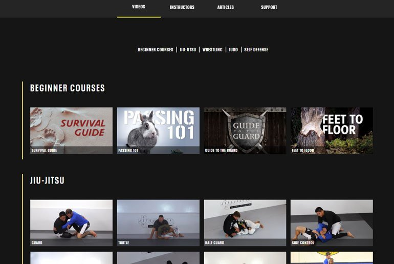 jiu jitsupedia - BJJ Online Coaching: The Final Nail In The Coffin