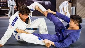 images 25 - Sport Jiu-Jitsu vs. The Gentle Martial Art Of BJJ