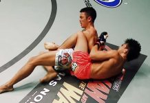BJJ Chicken Wing Control And Submissions