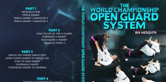 Bia Mesquita DVD World Championship Open Guard System Review