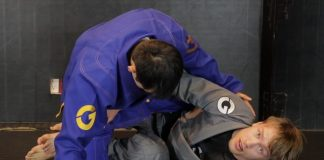BJJ Frames And Levers