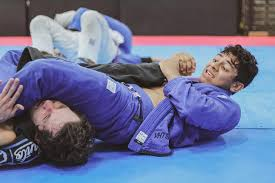 armlock - How All Brazilian Jiu-Jitsu Submission Holds Work