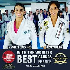 download 27 - How To Learn From BJJ Camps, Seminars And School Visits