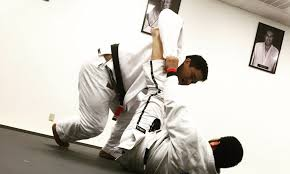 images 3 - BJJ Science: Laws Of Physics And Principles Of Nature In Grappling