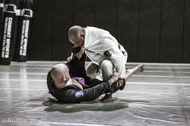 images - Finding Your BJJ Style: How To Train Jiu-Jitsu For Life